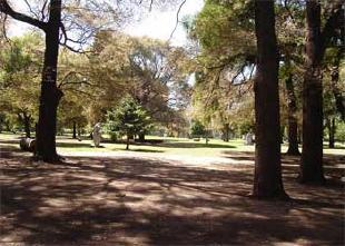 Teatro en el Parque